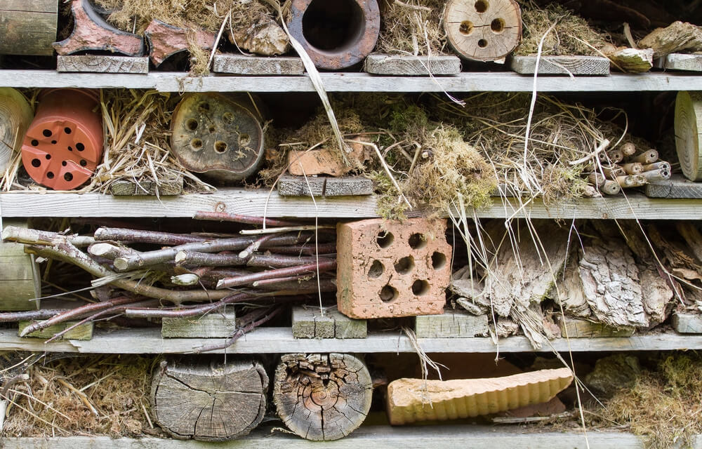 insect hotel - create a wildlife-friendly garden