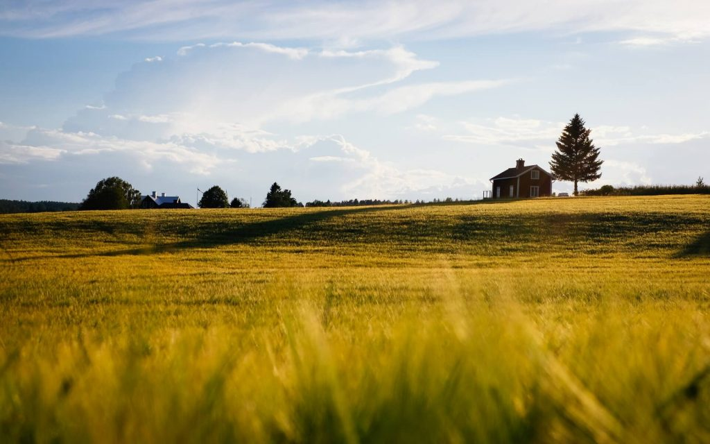 work with me - Home in the Pastures